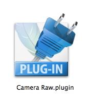 camera_raw_plug.jpg