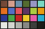 color_grid.jpg